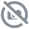 Collier doré Anartxy oval en rouge